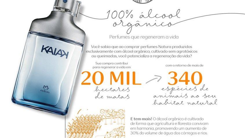 sustentabilidade-100-alcool-organico