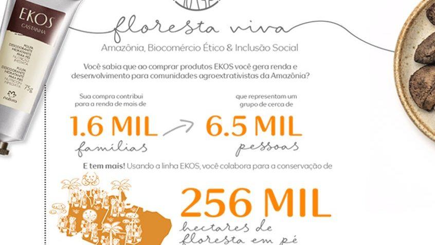 sustentabilidade-floresta-viva